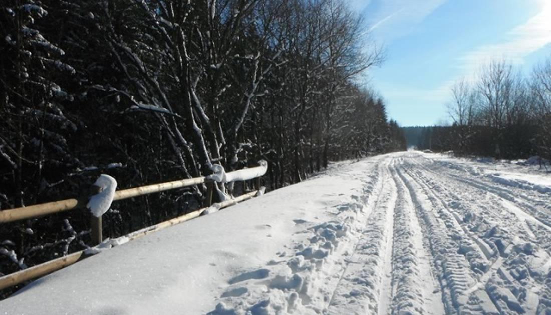 skizentrum losheimergraben 13 c schroeder
