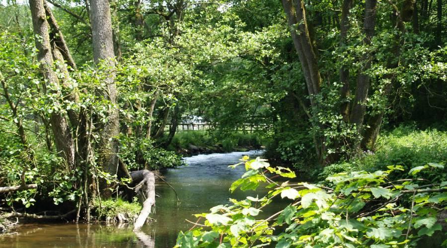 Foto: Bild: Gemeinde Amel, Tourismusagentur Ostbelgien