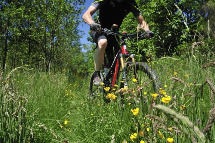 mtb tour st vith schoenberg 09 c eastbelgium.com