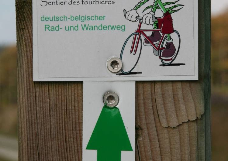 hohes venn lehrpfad moor route 03 c eastbelgium.com