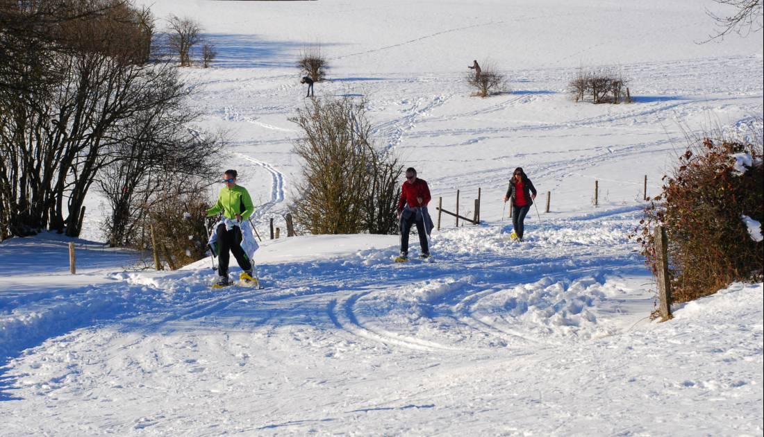 ski manderfeld 17 c jw eastbelgium.com