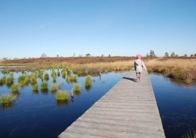 promenade cp parc naturel hf e asbl