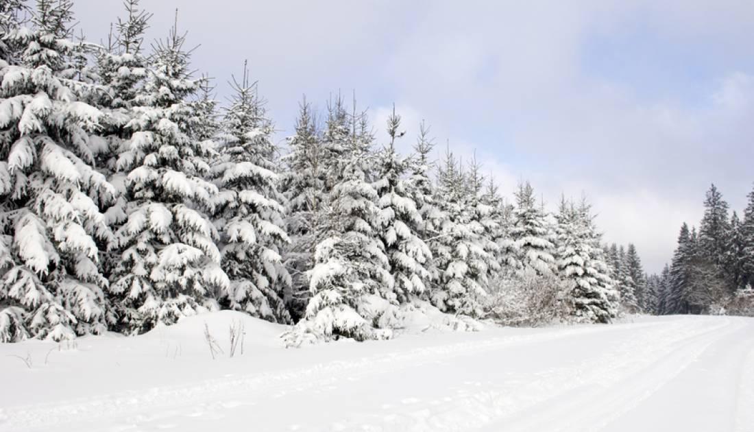 skizentrum eifel ski zentrum rocherath 04 c ostbelgien.eu
