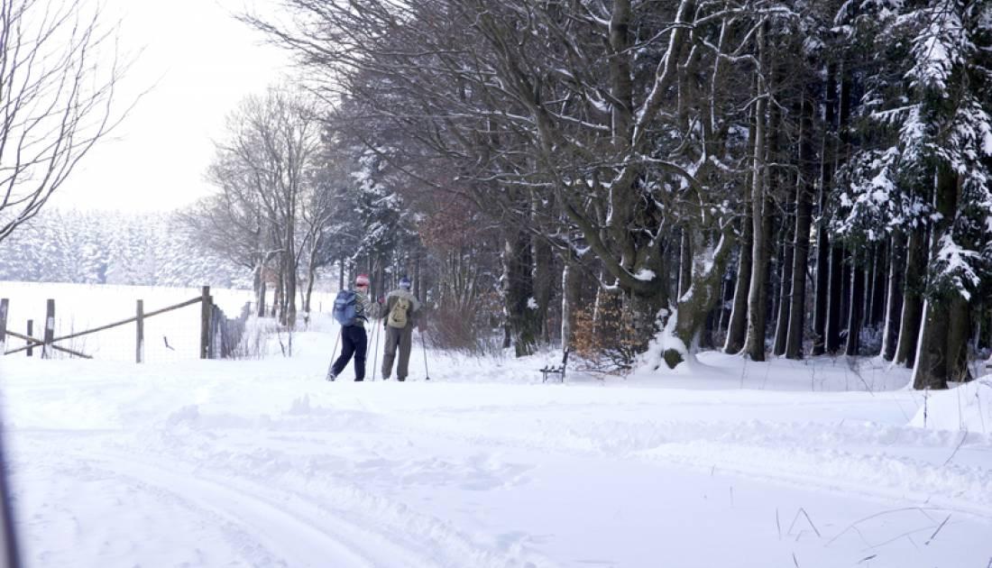 skizentrum eifel ski zentrum rocherath 05 c ostbelgien.eu