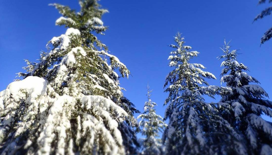 skizentrum schoenberg aktiv 06 c ostbelgien.eu