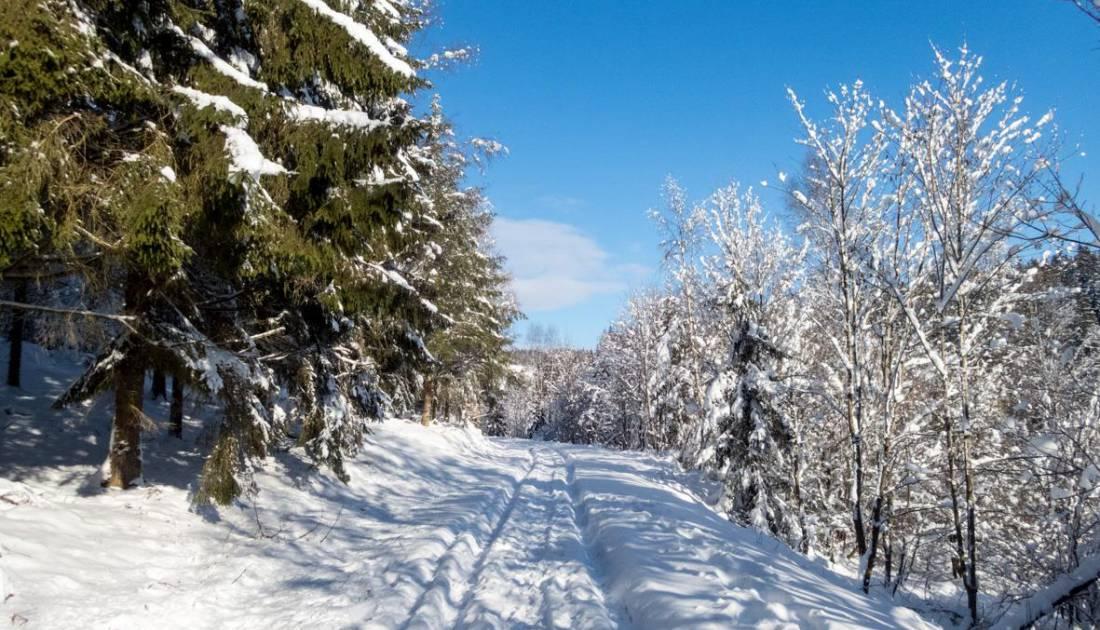 skizentrum schoenberg aktiv 10 c ostbelgien.eu
