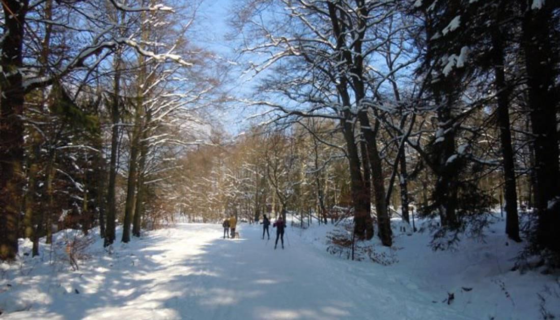 skizentrum ternell 06 c ostbelgien.eu