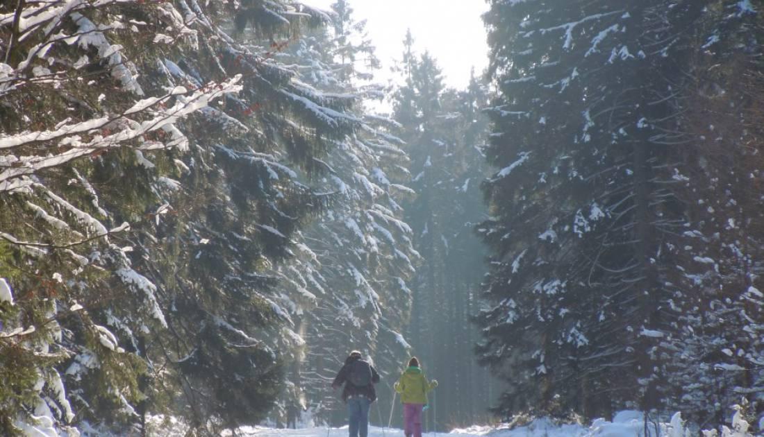skizentrum ternell 05 c ostbelgien.eu