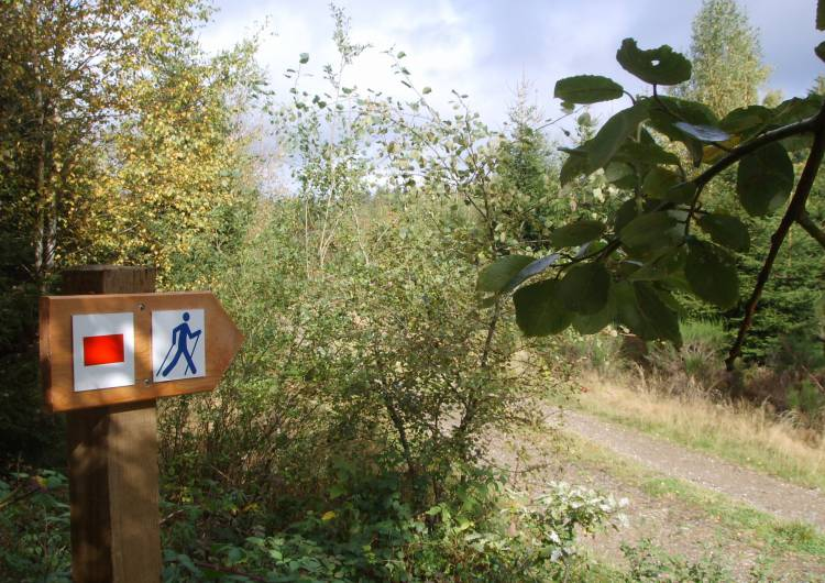 schoenberg nordic walking 02 c vv schoenberg