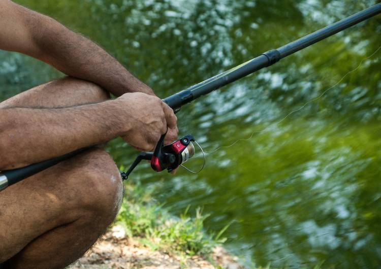 fisherman 1591841 c pixabay