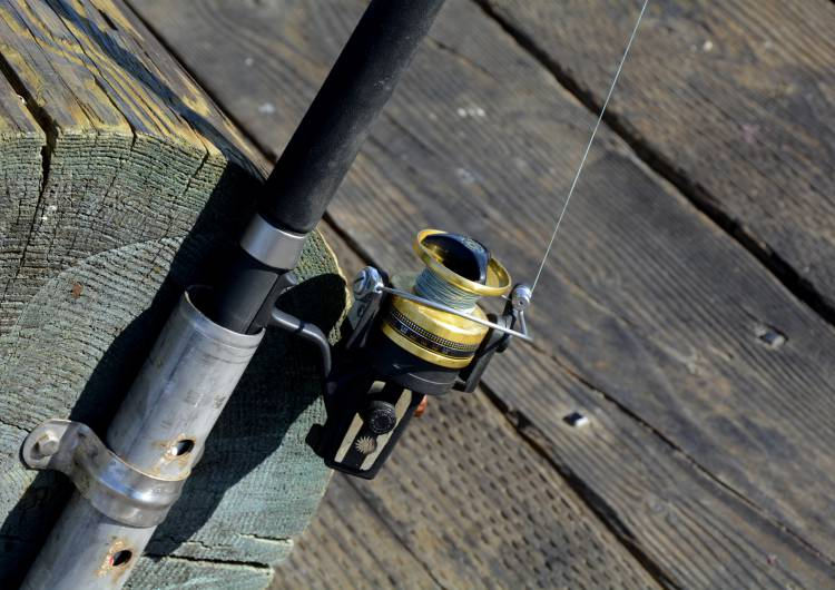 fishing reel 1787079 c pixabay