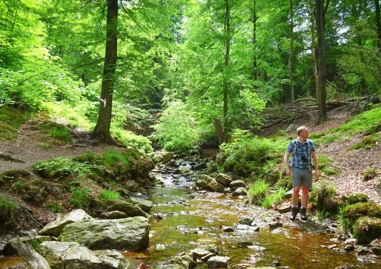 ternell wandern hill 02 c trekking et voyage