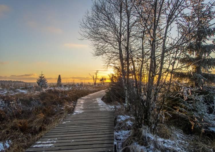 hohes venn frost 17 c pa massotte