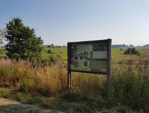 born emmels naturschutzgebiet 01 c ostbelgien.eu
