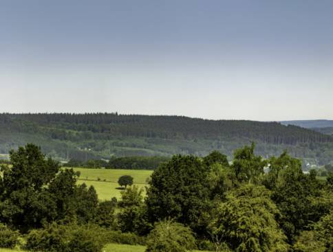medell depertzberg panorama wolfsbusch 01 c christian charlier ostbelgien.eu