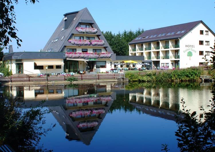 buellingen hotel haus tiefenbach 01 c haus tiefenbach